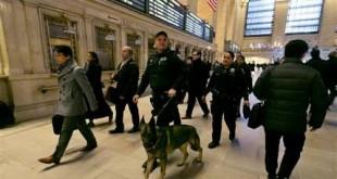 TERROR DEFENSE-DOGS